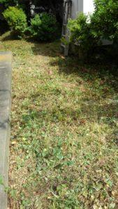 S 8162282907994 169x300 - 戸塚区と寸沢嵐で草刈り