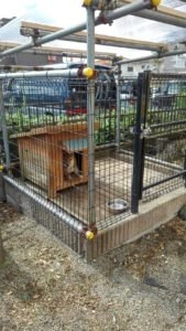 S 8554119412251 169x300 - 相模原市中央区清新で犬小屋の修理