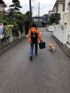 S  39002114 225x300 - お散歩3日め