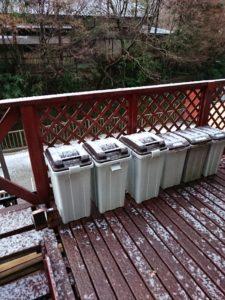 8351 225x300 - 雪と温泉と猫