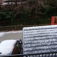 8352 200x200 - 雪と温泉と猫