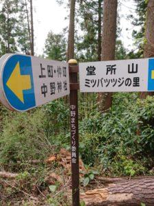 9054 225x300 - 中野山春のふれあいウォーキング