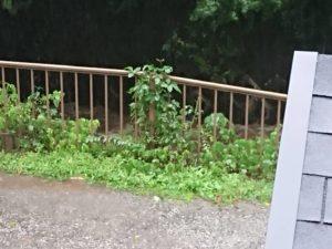 11444 300x225 - 相模原市緑区から台風19号の爪痕