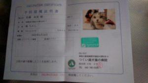 14432 300x169 - つくい湖犬猫の病院で予防接種
