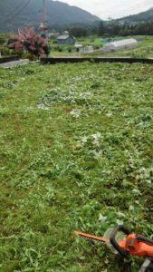 R2.7.12 7 169x300 - 寸沢嵐の草刈り