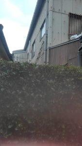 7486 169x300 - 板橋区志村で草刈り?草むしり