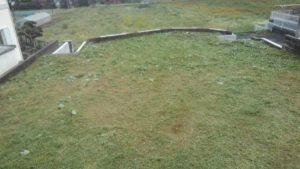 7519 300x169 - 板橋と寸沢嵐で草刈り&ツノナス