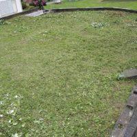 R3.7.13 3 200x200 - 寸沢嵐で草刈り