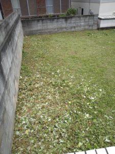 R3.7.13 4 225x300 - 寸沢嵐で草刈り